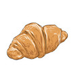 hand drawn sketch of croissant in color isolated vector image vector image