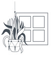 houseplant on macrame hangers icon vector image vector image