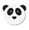 isolated panda face vector image vector image