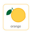 orange icon tropical citrus outline flat sign vector image