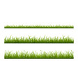 realistic green grass lawn border or meadow vector image vector image