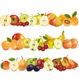 set of fruits backgrounds vector image vector image