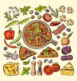 slices of pizza with cheeses olives and other vector image