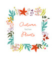 autumn colorful plants in decorative element of vector image vector image