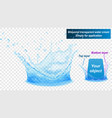 double layer water splash crown vector image vector image