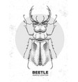 realistic hand drawing stag beetle artistic bug vector image