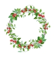 Round Christmas wreath with holly branches vector image vector image
