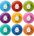Round icons with bugs vector image vector image