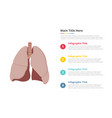 human lungs infographics template with 4 points vector image vector image