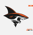 orange shark logo vector image