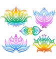 set of ornamental lotus flowers vector image vector image