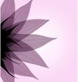 Abstract pink flower vector image vector image