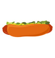 big hot dog with salad ketchup and mustard vector image