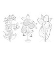 black and white page for baby coloring book set vector image