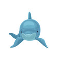 blue dolphin swimming front view vector image