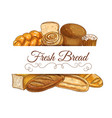 fresh bread and pastry sketch frame banner vector image vector image