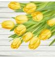 Fresh yellow tulips on wooden background EPS 10 vector image vector image