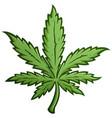 marijuana leaf cartoon vector image vector image