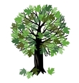with a maple tree vector image