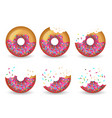 eating donut delicious glazed tasty cake half vector image vector image