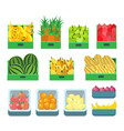 fruit store containers with sweet products vector image vector image