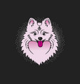 image of a dog pomeranian dog head vector image vector image