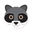 isolated racoon face vector image vector image