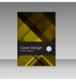Abstract graphics beautiful brochures vector image