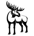 black moose sign vector image vector image