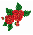 flower rose vector image vector image