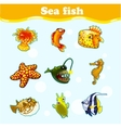 Gold set of marine animals on a blue background vector image vector image