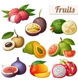 set cartoon food icons exotic fruits isolated vector image vector image