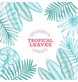 tropical plants banner design hand drawn tropical vector image vector image