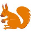 funny squirrel cartoon animal comic character vector image