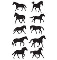 set black trotting horses silhouettes vector image vector image