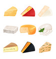 set of various cheese dairy products cartoon vector image