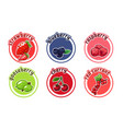 six stickers with different berries cherry vector image
