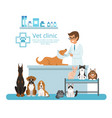 animals in cabinet vet hospital vector image vector image