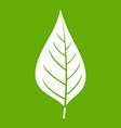 apple tree leaf icon green vector image