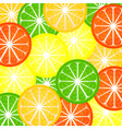background a citrus vector image vector image