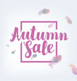 banner autumn sale with feathers vector image vector image
