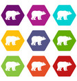 bear icon set color hexahedron vector image vector image