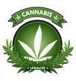 cannabis badge design vector image vector image