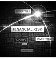 FINANCIAL RISK vector image vector image