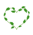 Green Vine Leaves in Beautiful Heart Shape Wreath vector image vector image