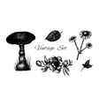 set of vintage etchimg flowers leaves and mushroom vector image