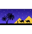Man on the camel the pyramids vector image