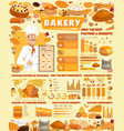 bakery infographics with pastry and baker vector image vector image