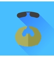 Beard and Sunglasses vector image vector image