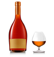 bottle brandy with glass vector image vector image